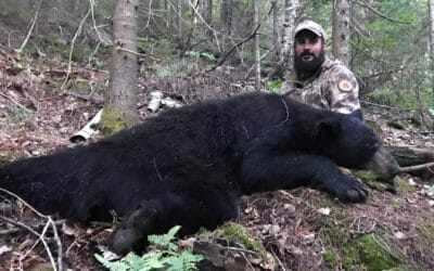 Bear Hunting at Ritchie Falls Resort