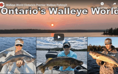 Walleye World: Ontario's Premier Walleye Fishing