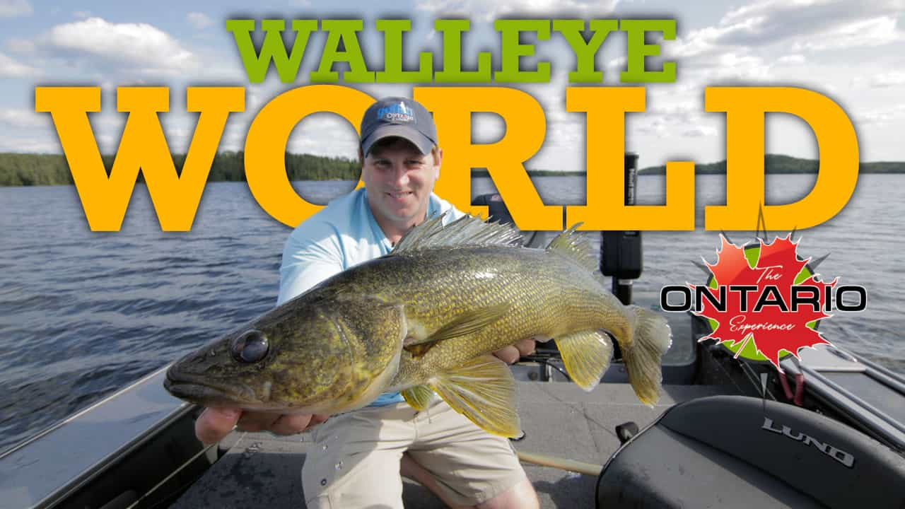 Walleye World