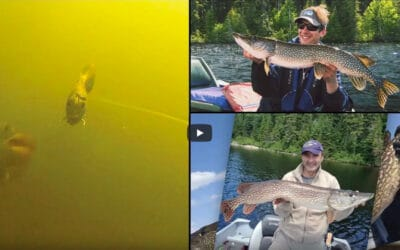 Quest for Ontario Monster Pike
